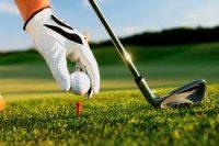Golf: Presidentebeker - dis vyf uit vyf vir Oosthuizen en Grace