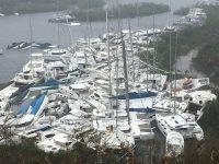 Suid Afrikaner in stryd om oorlewing op eiland ná Irma